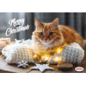 CHRISTMAS-PLACEMATE, CATS WITH ANTI-SLIP